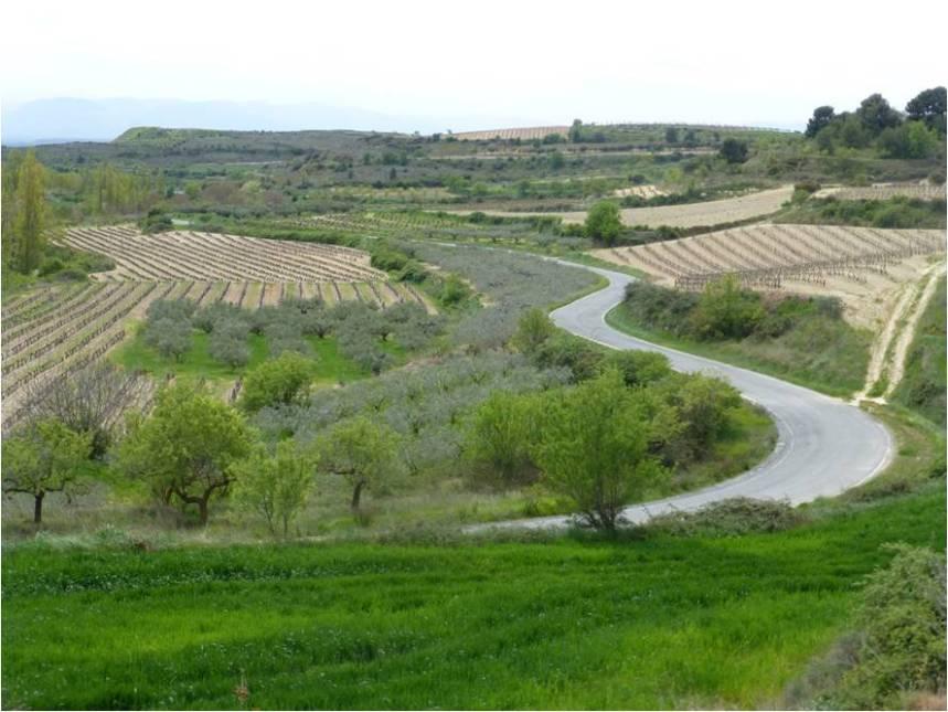 mosaic-landscape