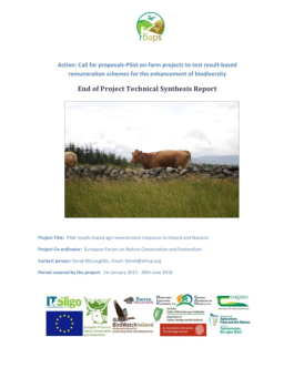 end of project synthesis report