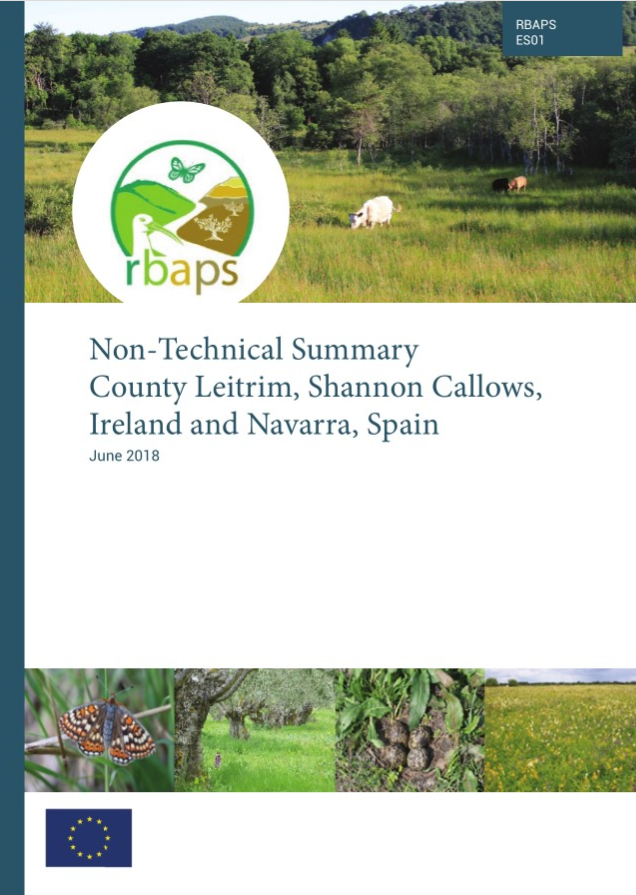Technical reports | RBAPS Project
