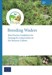 BP02_SC_Waders
